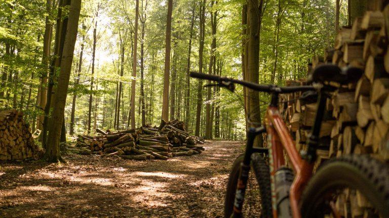 Mountainbiking in het Zoniënwoud