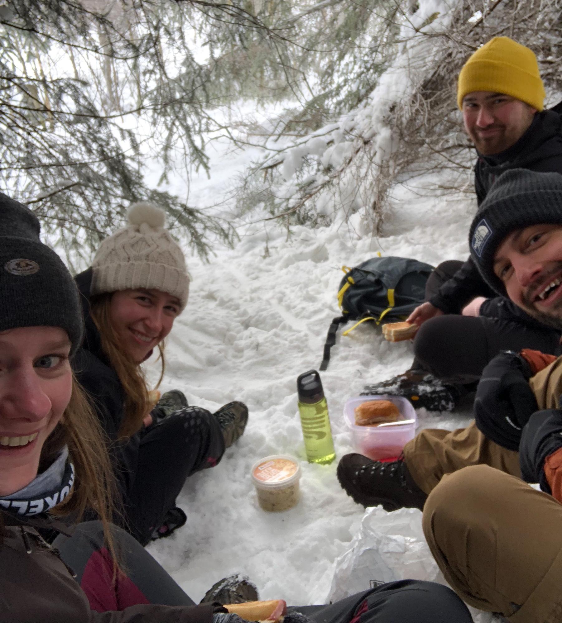 4 vrienden picknicken in de sneeuw