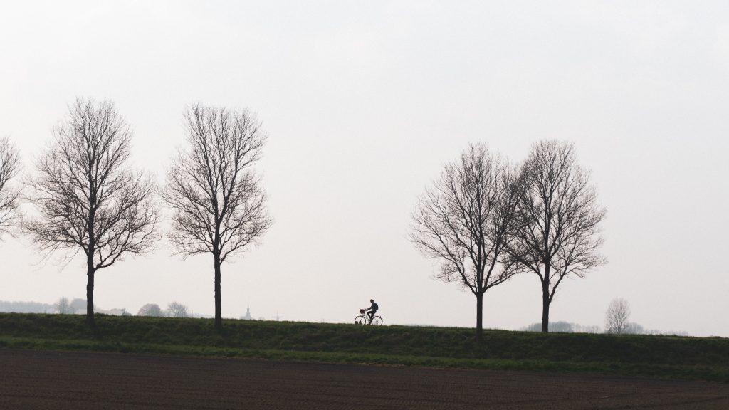 Landschap met fietser aan de horizon