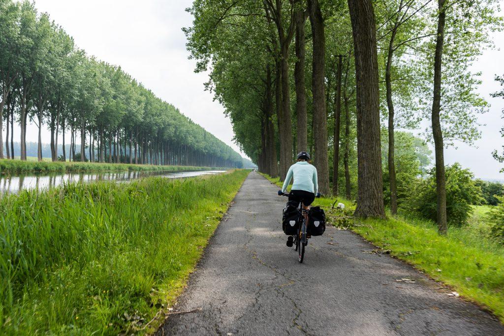 Fietser langs de oeverDamse Vaart richting Brugge
